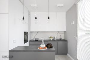Kuchnia otwarta na salon- wady i zalety użytkowania